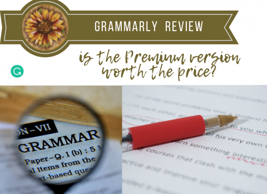 A Review of the program, Grammarly and what I think about it